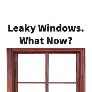 leaky windows blog.jpg