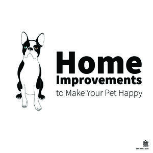 Home improvements to make your pets happy blog-01