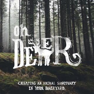 Oh deer blog.jpg