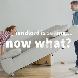 landlord is selling blog.jpg