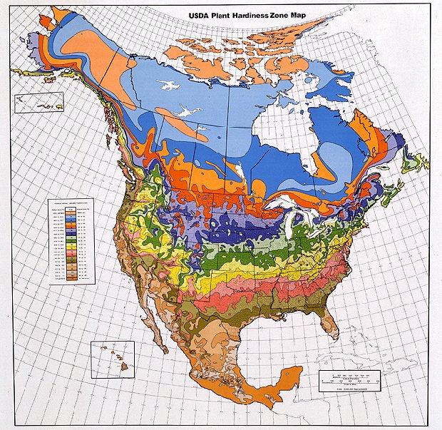 Weather Map.jpg
